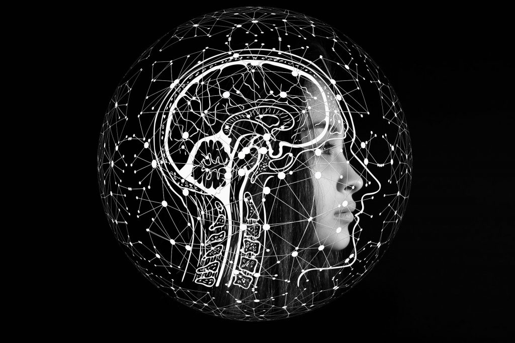 Lernen Schlaf intelligence