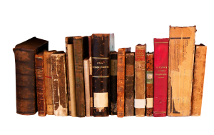 books reading literature 300x189 - Die 7 Grundsätze der Achtsamkeit - #5 Nicht-Erzwingen