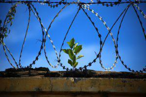 letting go breaking free 300x200 - Die 7 Grundsätze der Achtsamkeit - #7 Loslassen