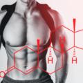 mann athlet testosteron Männlichkeit